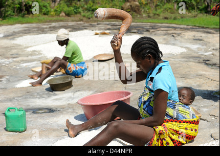 ANGOLA Kwanza Sul, rural development project, village Catchandja, women mash Cassava to flour which is the stable - Stock Photo