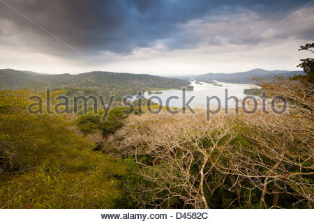 View from Gamboa over Soberania national park and Rio Chagres, Republic of Panama. - Stock Photo