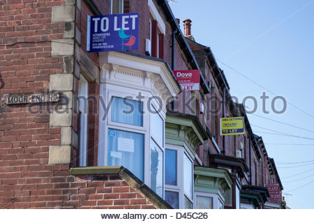 To Let signs on a row of terraced houses in Sheffield - Stock Photo