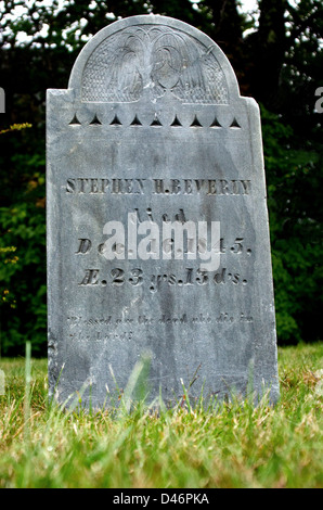 early nineteenth century headstone with carved weeping willow - Stock Photo