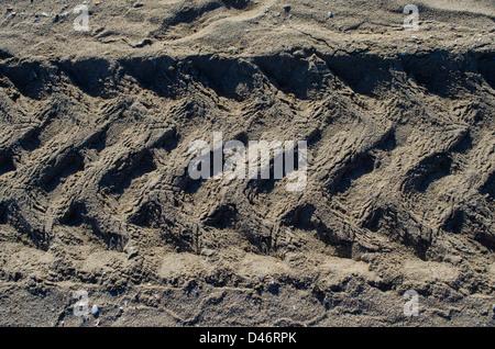 tracks in sand - Stock Photo
