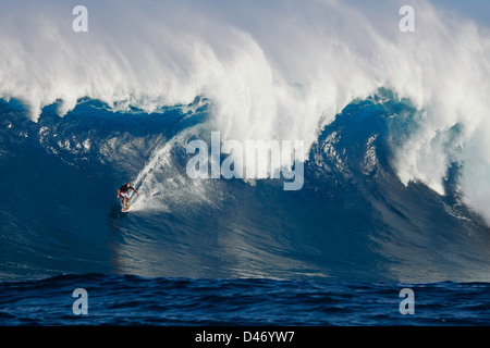 A tow-in surfer drops down the face of Hawaii's big surf at Peahi (Jaws) off Maui, Hawaii, USA.