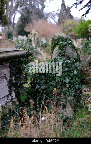 Old graveyard with headstones, covered in ivy, Brompton Cemetery, London, UK - Stock Photo