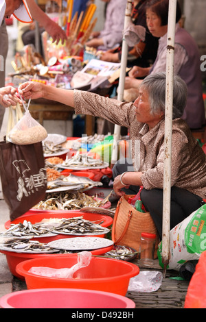 A Chinese woman selling fish and dried produce at a street market in Zhou Zhang China - Stock Photo