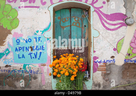 Bouquets of flowers in front of weathered doorway and wall in Ocotlan, Oaxaca, Mexico. - Stock Photo
