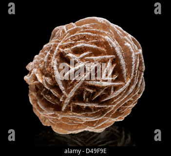Baryte 'Desert Rose' - Stock Photo