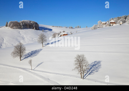 Schauinsland, near Freiburg im Breisgau, Black Forest, Germany, Europe - Stock Photo
