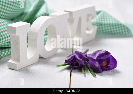 word 'love' made from wood with crocus flowers over white wooden background - Stock Photo