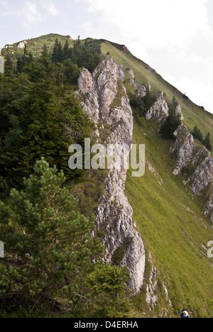 Suchy hill in Krivanska Mala Fatra mountains in Slovakia with limestone rocks, steep mountain meadow and blue sky - Stock Photo