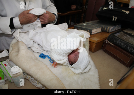 bris milah circumcision The performance of bris milah is one of the most sacred rituals in jewish life   the mohel (trained person performing the circumcision) should determine that.