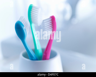 Close up of toothbrushes in holder - Stock Photo