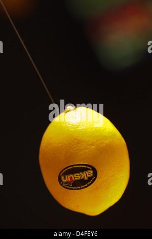 Berlin, Germany, lemon at Fruit Logistica 2011 - Stock Photo