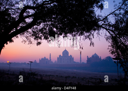 The Taj Mahal at sunrise, photographed from across the dried up river Yamuna, in Mehtab Bagh park - Stock Photo