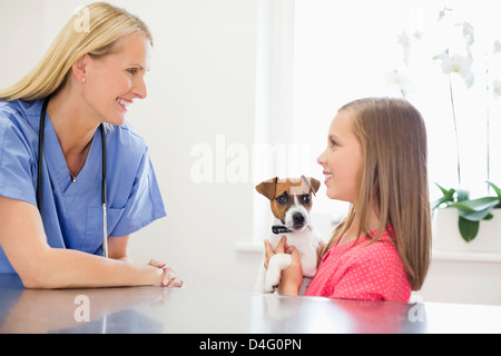 Veterinarian and owner examining dog in vet's surgery - Stock Photo
