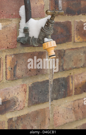 Leaking water tap frozen over in sub zero conditions icicle hanging from nozzle outside handle covered in snow - Stock Photo