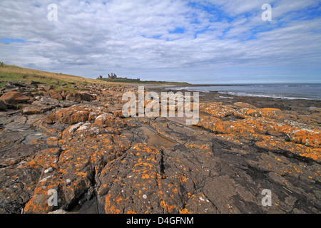 Dunstanburgh Castle from Greymare Rock, Northumberland, England, UK - Stock Photo