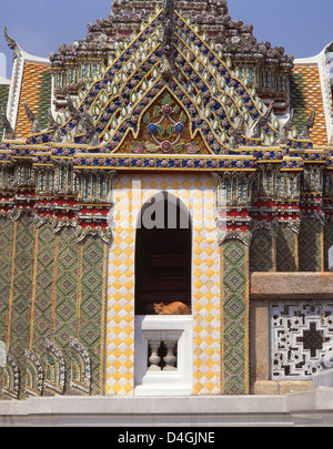 Cat resting at temple, Grand Palace, Rattanakosin Island, Phra Nakhon District, Bangkok, Thailand - Stock Photo