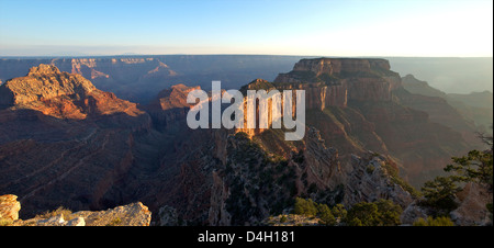 Panoramic in late evening from Cape Royal, North Rim, Grand Canyon National Park, UNESCO World Heritage Site, Arizona, - Stock Photo