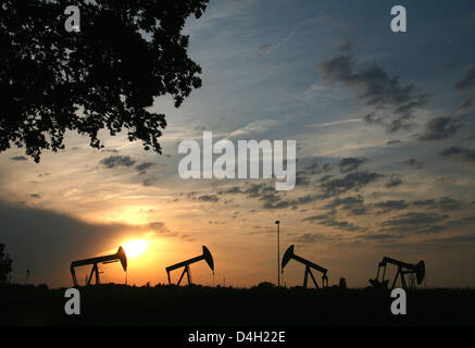 The sun sets behind four pumpjack-type oil pumps near Emlichheim, County Bentheim, Germany, 28 July 2008. Since 60 years Kassel-based energy provider 'Wintershall' has been producing oil in the border region to the Netherlands. 150,000 tons of oil are conveyed per year. Photo: Uwe Zucchi