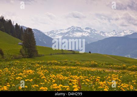 The snow capped mountains of the Haute-Savoie near to Les Saisies, Haute-Savoie, France - Stock Photo