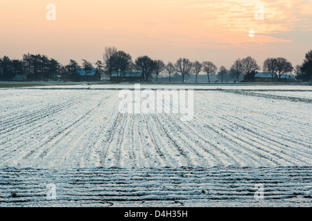 Low sun over ploughed fields covered in snow, Rijsbergen, North Brabant, The Netherlands (Holland) - Stock Photo