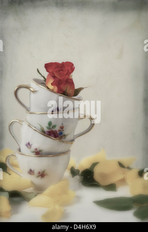 four vintage cups with a rose - Stock Photo
