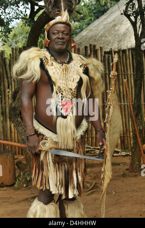 Zulu chief in battle dress with spear and shield posing for tourists at theme village Shakaland, KwaZulu-Natal, - Stock Photo