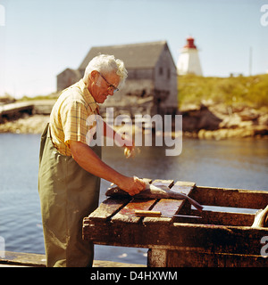 Fisherman cleaning fish in Canada;Nova Scotia;East Coast;Atlantic Coast;Fishing Boats and fishing villages - Stock Photo