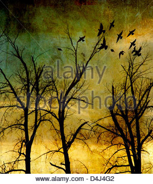 Atmospheric spooky forest with bare branches - Stock Photo
