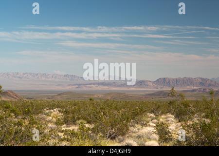 Joshua Tree National Park, Mojave Desert, California, USA - Stock Photo