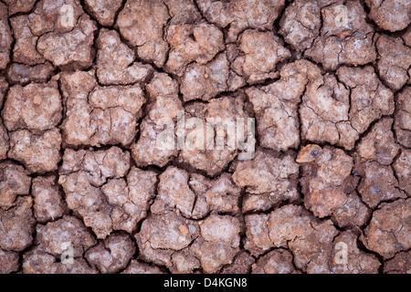 Cracked earth in Sarigua national park, Herrera province, Republic of Panama. - Stock Photo