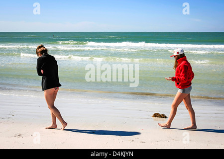 Two college girls on spring break collecting shells on Siesta Key beach Florida - Stock Photo