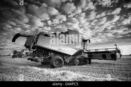 Claas combine harvesting barley in Norfolk UK - Stock Photo