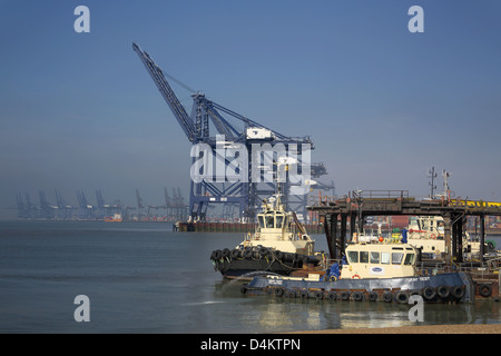 cranes at the port of felixstowe on the sussex coast - Stock Photo