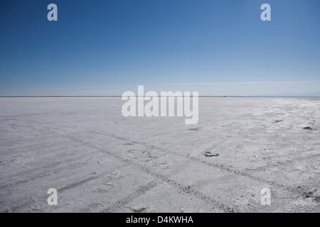 Tire tracks in desert landscape - Stock Photo