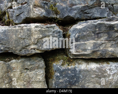 full frame detail of a old stone wall with mossy chinks - Stock Photo