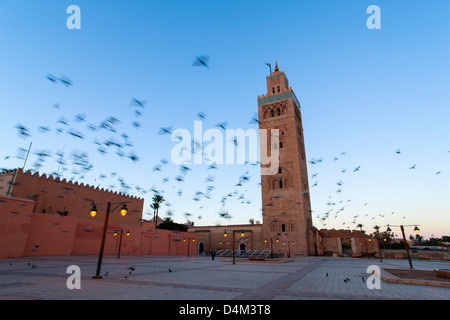 Blurred view of birds over courtyard - Stock Photo