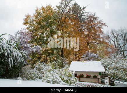 House and trees in snowy landscape - Stock Photo