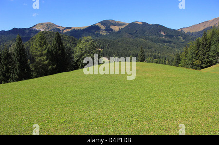Green alpine meadow with forests and high mountains in the background - mountain landscape, Karavanke mountains, - Stock Photo