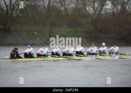 UK. 17th March, 2013.  Oxford University Boat Club (OUBC) fixture against a German eight.  Oxford Blue Boat crew: - Stock Photo