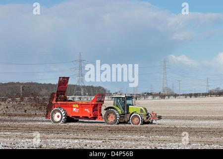 Farmer muck spreading a field in snow - Stock Photo