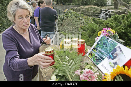 Inge Pfiz places a candle next to flowers and photos at the side of polar bear Knut?s enclosure at Berlin?s zoo, - Stock Photo