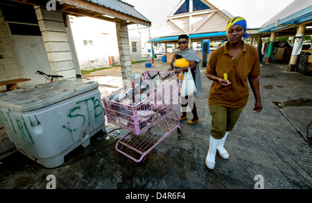 A woman buying fish with a shopping trolley packed with fresh tuna in Bridgetown fish market, Barbados, Caribbean - Stock Photo