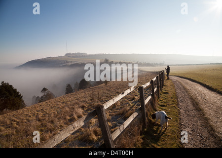 A morning view of Hannington TV mast on Cottington Hill in Hampshire seen from the Wayfarer's Walk on Cannon Heath - Stock Photo