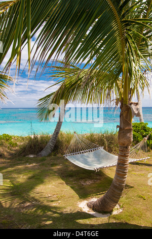 A hammock strung between two palm trees overlooking the sea. - Stock Photo