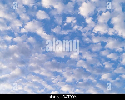 Middle level altocumulus clouds in a blue sky over Florida - Stock Photo