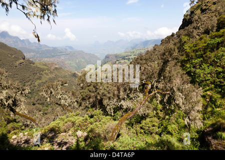 Landscape in the Semien Mountains National Park, Ethiopia - Stock Photo