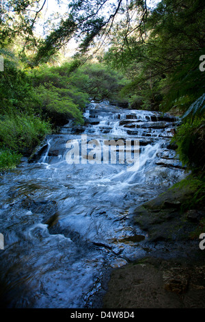 The Leura Cascades, Blue Mountains, New South Wales, Australia with - Stock Photo