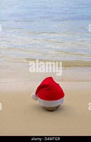 santa coconut - Stock Photo