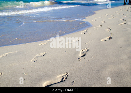 Footprints in wet sand of beach - Stock Photo